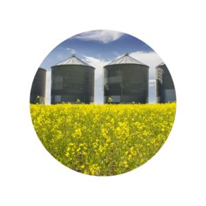 case history 2 industria alimentare bioaware